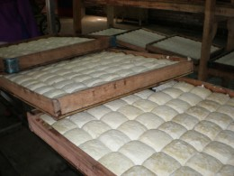 The finished tofu is collected on  large trays.