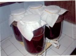 Fermenting kombucha tea