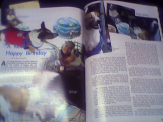 Birthday article of Peso and an update of his condition to