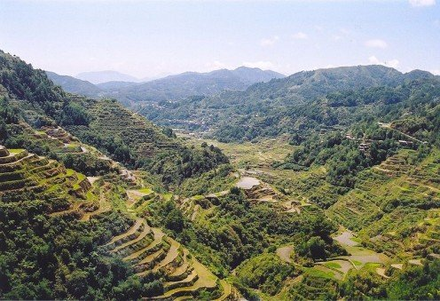 The beautiful rice terraces, where a lot of rice is grown.  I would love to see this in person.