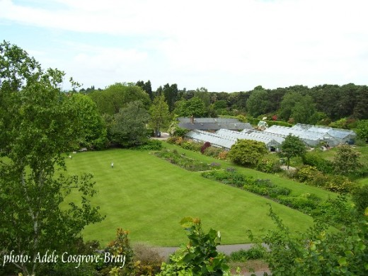 Overlooking the lawns towards the greenhouses.