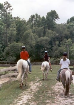 Horse Camps: Choosing the Right Camp for Your Child