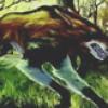 basejumper profile image
