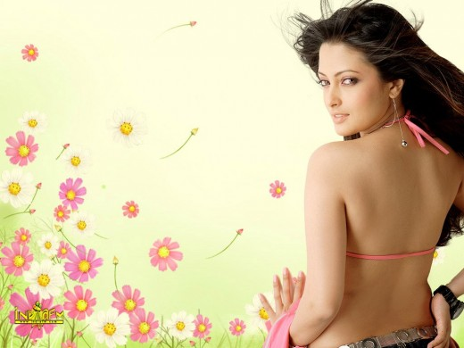 sexy hot bikini photos of riya sen indian bollywood hot female actress images photos and picture gallery