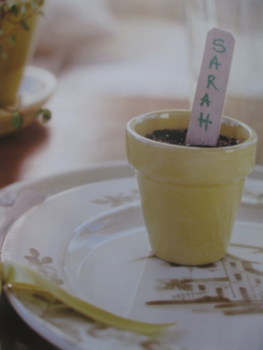 Pre-seeded mini flower pot as place setting and favor.