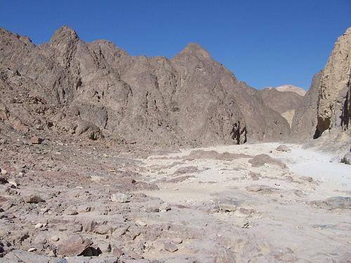 Rocky area in The Negev Desert