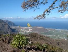 View from Tierra del Trigo