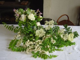 Black locust and elder flowers