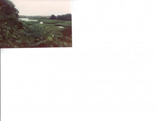 Block Island marshes