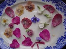 Serve the elderflower fritters with sugared flowers
