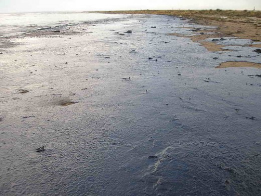 "Oil spills in the ocean can ""turn the water black"" and kill off sea life."