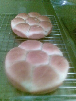 Fresh baked savory tatoto bread resembles banana cake in texture and is made with the same recipe as potato bread; but in this case substitute the potato ingredient with tatoto.