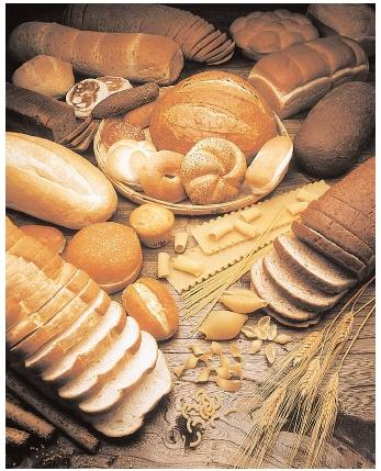 BREAD & PASTA (Photo courtesy of http://jwilkinson.glogster.com/)