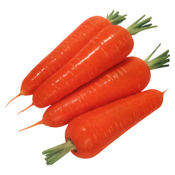 Fresh carrots to make carrot kheer