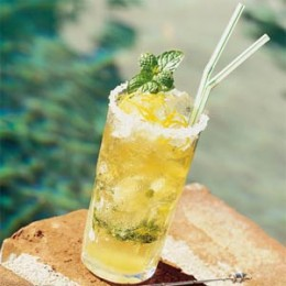 MINT JULEP (Photo courtesy of http://1.bp.blogspot.com/)