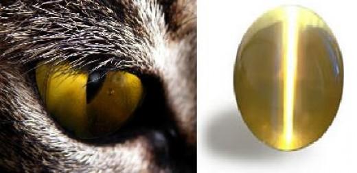 Like the name suggests, cat's eye chrysoberyl looks like an eye of a cat