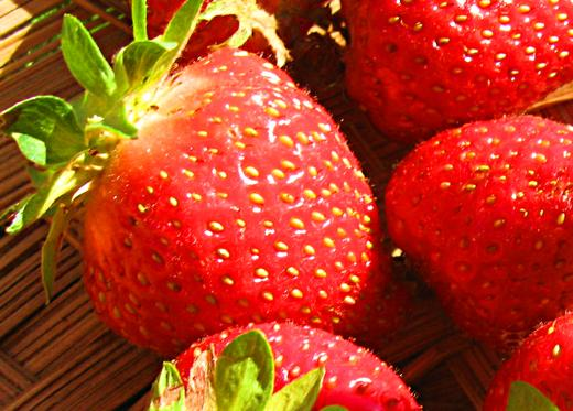 Fresh strawberries / Photo by E. A. Wright