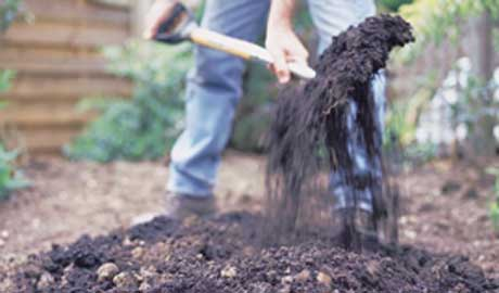 Photo Credit: http://www.gardenersworld.com/how-to/projects/soil-improve/main.jpg