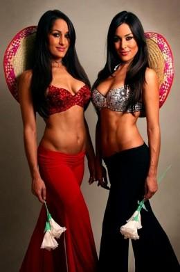 The Bella Twins (WWE)