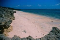 The wild beaches of Kudaka.