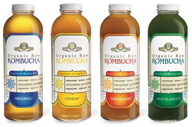 From http://ohbriggsy.files.wordpress.com/2010/02/kombucha.jpg
