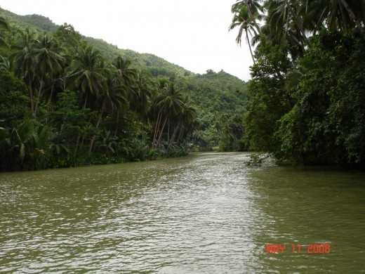 The Loboc River