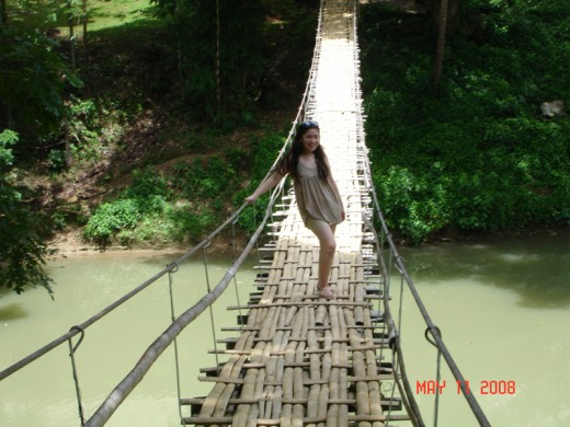 The hanging bridge