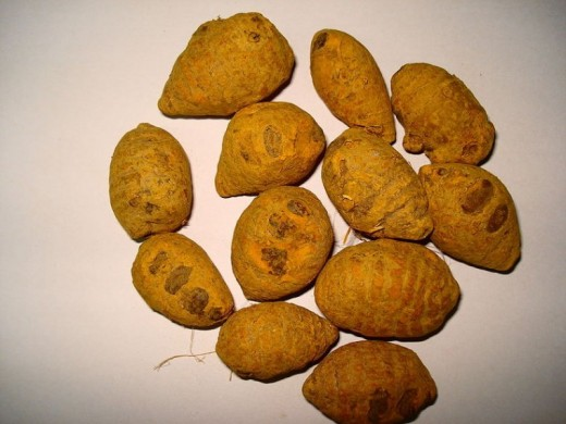 Turmeric, often used in Indian cuisine