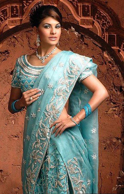Bollywood Actress in a Saree 1