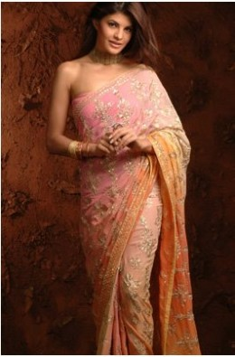 Saree's Cloth on Actress India Woman