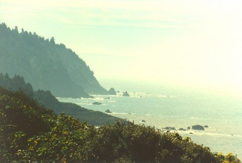 The coast of northern California near Crescent City.