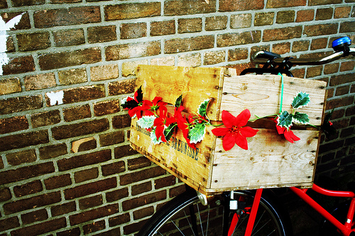 Accessorise your ladies bicycle with anything. And everything! It doesn't have to cost a thing...