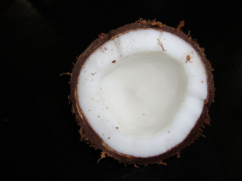 A beautiful coconut