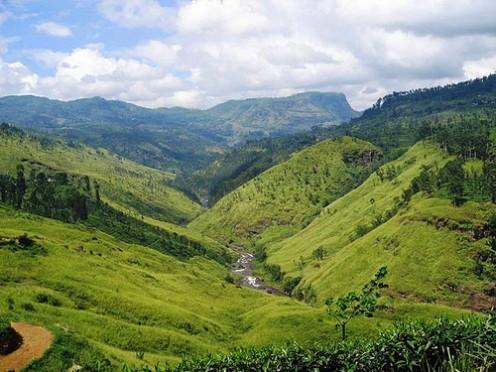 Sri Lanka Beautiful Landscape