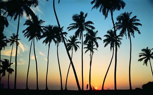 Sunset in Sri Lankan Beach