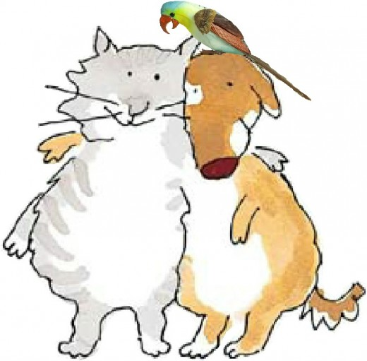 Happy cat, dog, and bird