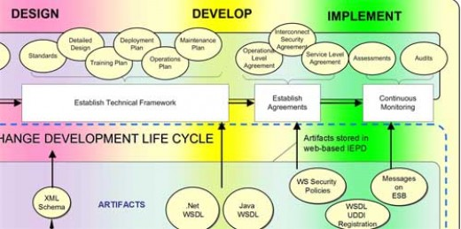MIS Life Cycle