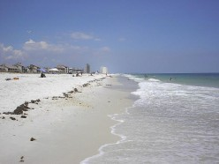 No Place Like Florida - Travel And City Reviews