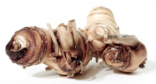 Galangal Root, often used in spice pastes.