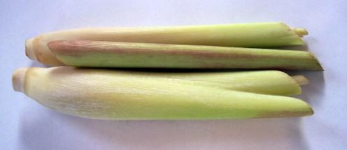 Lemon grass, prepared for use.