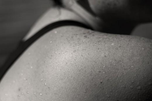 shoulder - from http://farm1.static.flickr.com/82/214691627_9413aa958c.jpg