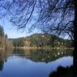 The jewel of southern california lake gregory for Lake gregory fishing report
