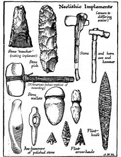 Unit 2 - The Neolithic Revolution's New Developments
