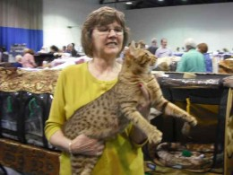 Nice kitty!