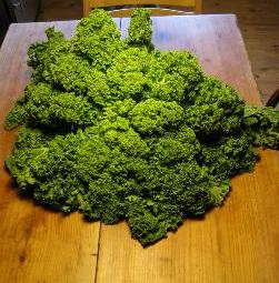 Kale, one of the great additions to Ugali, and raises the nutritional value.