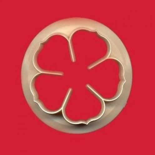 A Five Petaled Rose
