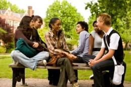 Brain loves social interaction