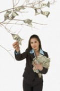 Money for weddings does NOT grow on trees!