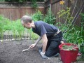 Using a weeding fork.