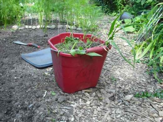 Bucket and kneeling pad.